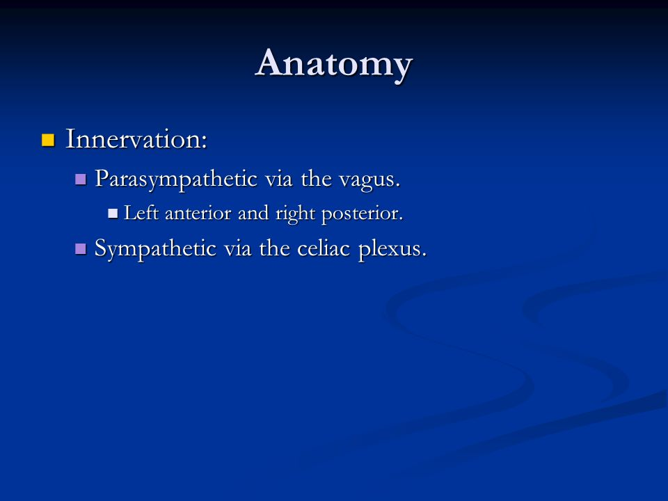 Anatomy Innervation: Innervation: Parasympathetic via the vagus. Parasympathetic via the vagus. Left anterior and right posterior. Left anterior and r