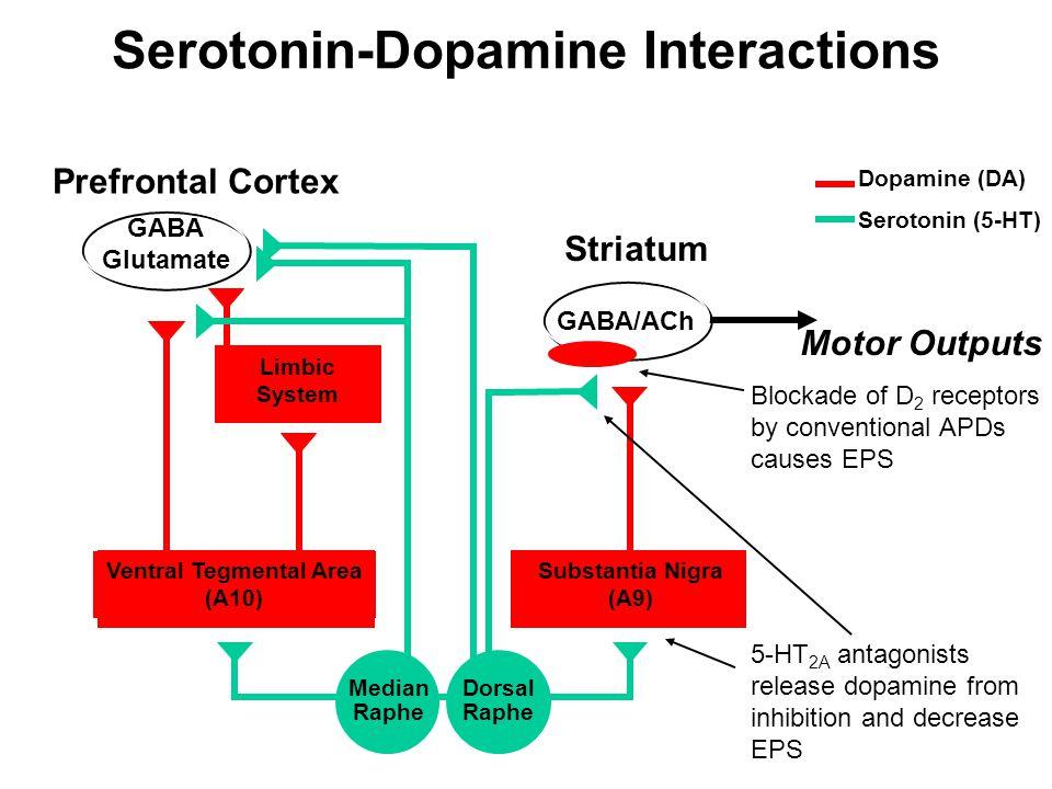 Prefrontal Cortex Limbic System GABA/ACh Striatum Ventral Tegmental Area (A10) Substantia Nigra (A9) Dorsal Raphe Median Raphe 5-HT 2A antagonists rel