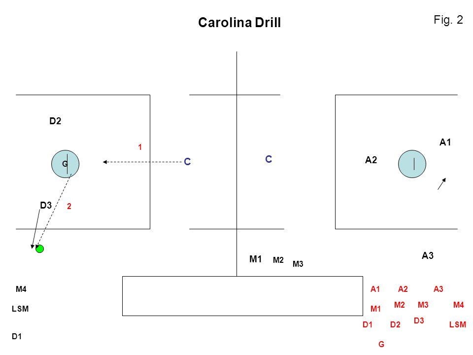G M2 M3 LSM D1 M4A1A2A3 M1 M2M3M4 D1D2 D3 LSM G D3 D2 M1 A3 A2 A1 C C Carolina Drill 1 2 Fig. 2
