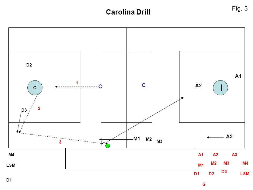 G M2 M3 LSM D1 M4A1A2A3 M1 M2M3M4 D1D2 D3 LSM G D3 D2 M1 A3 A2 A1 C C Carolina Drill 1 2 3 Fig. 3