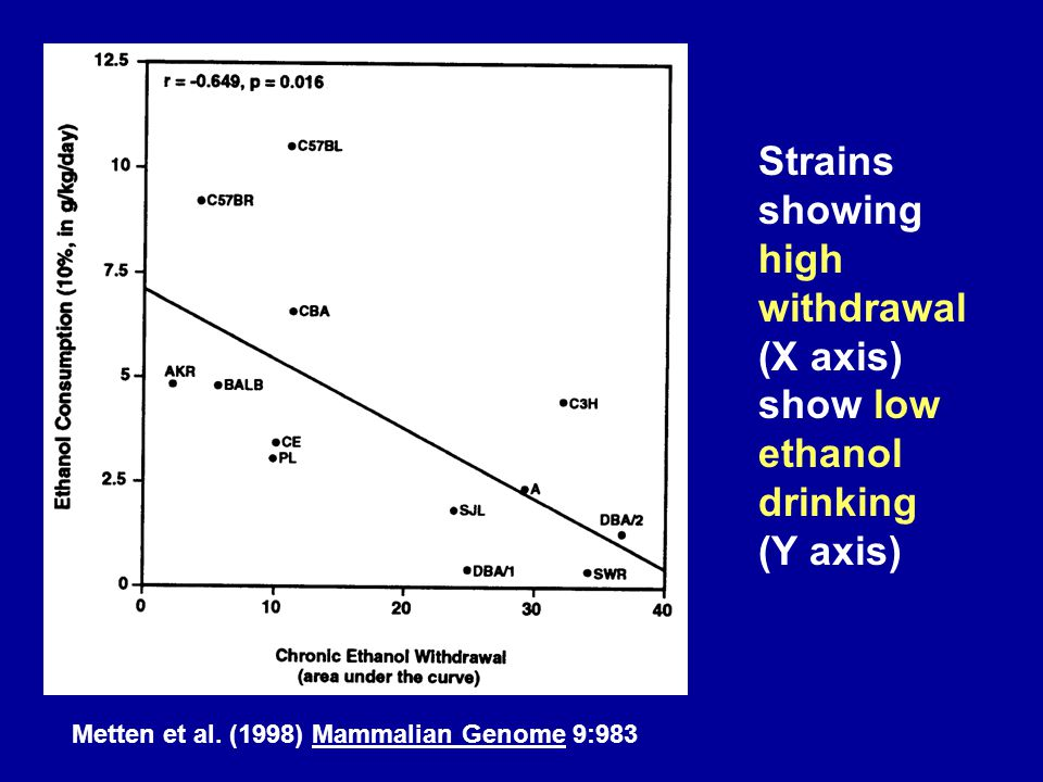 Metten et al. (1998) Mammalian Genome 9:983 Strains showing high withdrawal (X axis) show low ethanol drinking (Y axis)