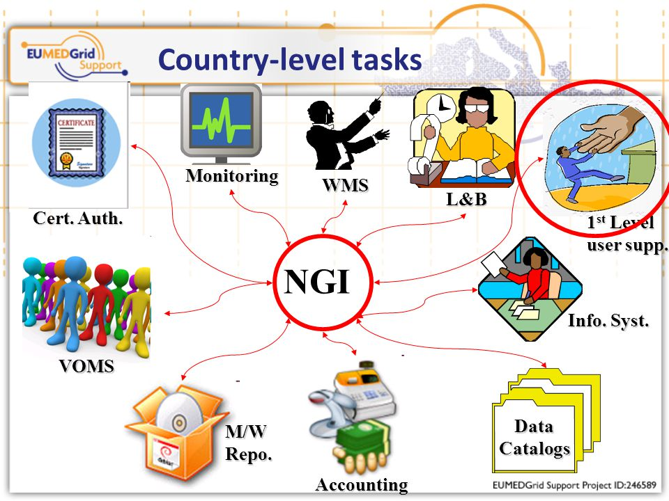 Country-level tasks NGI Monitoring Accounting M/WRepo.