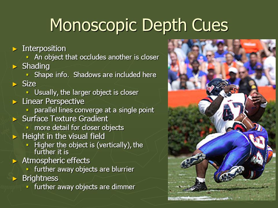 Motion Depth Cues ► Parallax created by relative head position and object being viewed.