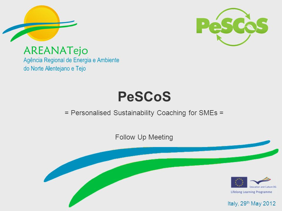 Italy, 29 th May 2012 PeSCoS = Personalised Sustainability Coaching for SMEs = Follow Up Meeting