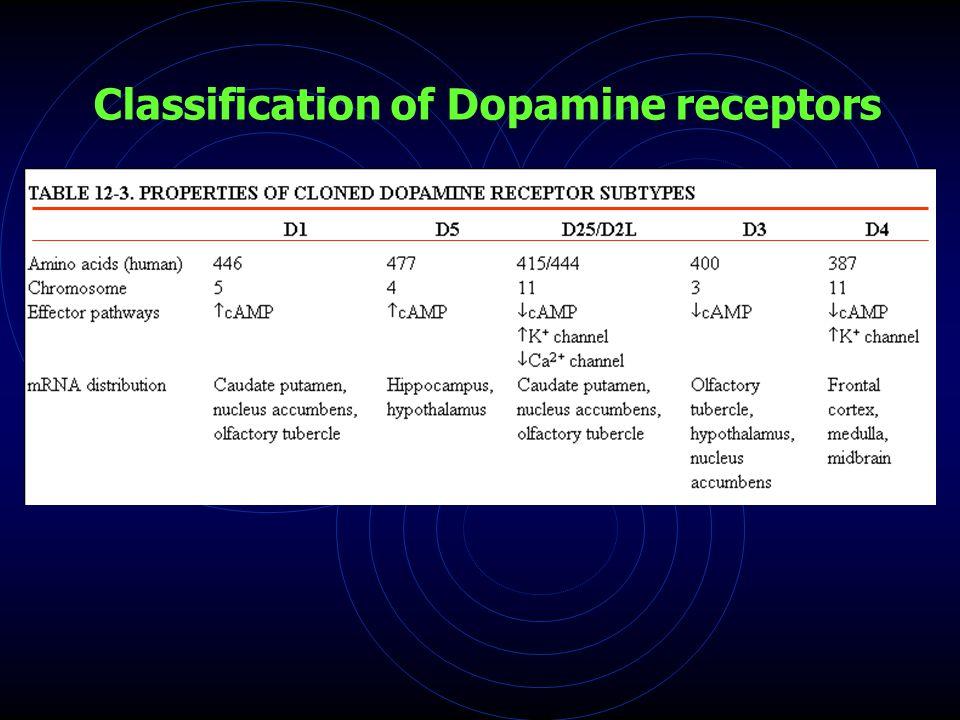 Classification of Dopamine receptors