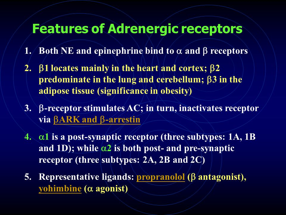 Features of Adrenergic receptors 1.Both NE and epinephrine bind to  and  receptors 2.