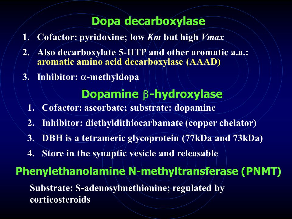 Dopa decarboxylase 1.Cofactor: pyridoxine; low Km but high Vmax 2.Also decarboxylate 5-HTP and other aromatic a.a.: aromatic amino acid decarboxylase (AAAD) 3.Inhibitor:  -methyldopa Dopamine  -hydroxylase 1.Cofactor: ascorbate; substrate: dopamine 2.Inhibitor: diethyldithiocarbamate (copper chelator) 3.DBH is a tetrameric glycoprotein (77kDa and 73kDa) 4.Store in the synaptic vesicle and releasable Phenylethanolamine N-methyltransferase (PNMT) Substrate: S-adenosylmethionine; regulated by corticosteroids