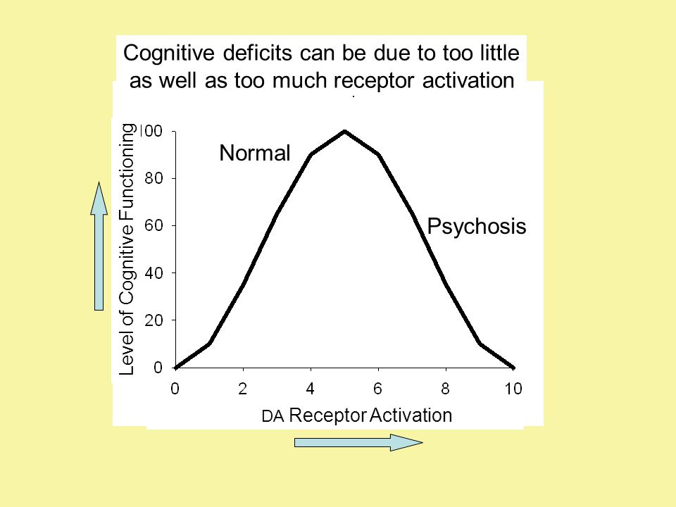 DA Receptor Activation Level of Cognitive Functioning Cognitive deficits can be due to too little as well as too much receptor activation Psychosis Normal
