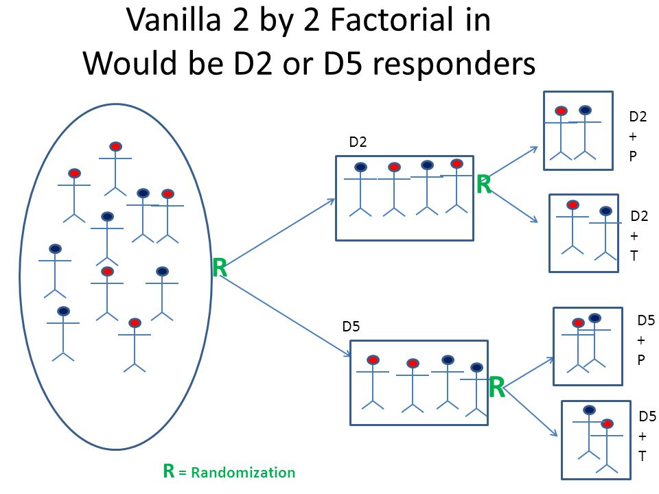 Vanilla 2 by 2 Factorial in Would be D2 or D5 responders D2 D5 R R R R = Randomization D2 + P D2 + T D5 + P D5 + T
