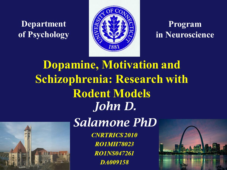 Dopamine, Motivation and Schizophrenia: Research with Rodent Models Department of Psychology Program in Neuroscience John D.