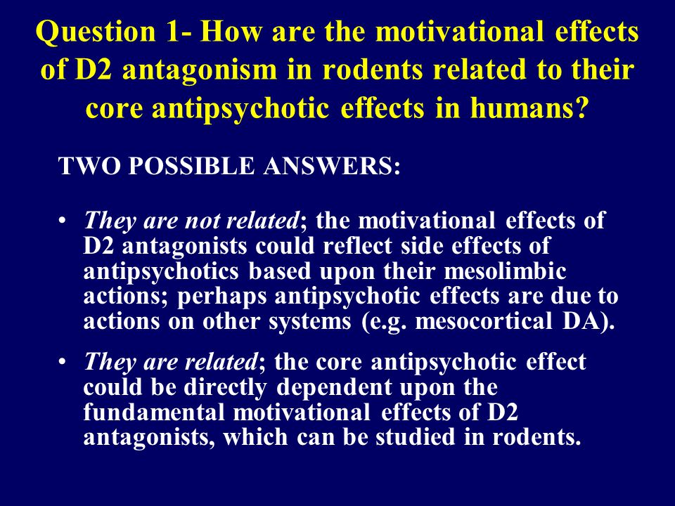 Question 1- How are the motivational effects of D2 antagonism in rodents related to their core antipsychotic effects in humans.