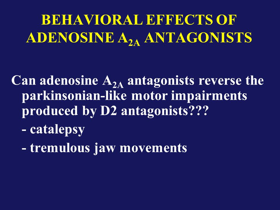 BEHAVIORAL EFFECTS OF ADENOSINE A 2A ANTAGONISTS Can adenosine A 2A antagonists reverse the parkinsonian-like motor impairments produced by D2 antagonists .