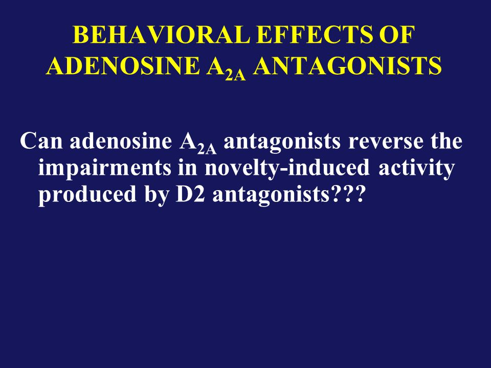 BEHAVIORAL EFFECTS OF ADENOSINE A 2A ANTAGONISTS Can adenosine A 2A antagonists reverse the impairments in novelty-induced activity produced by D2 antagonists
