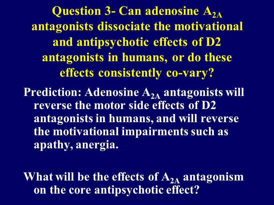 Question 3- Can adenosine A 2A antagonists dissociate the motivational and antipsychotic effects of D2 antagonists in humans, or do these effects consistently co-vary.