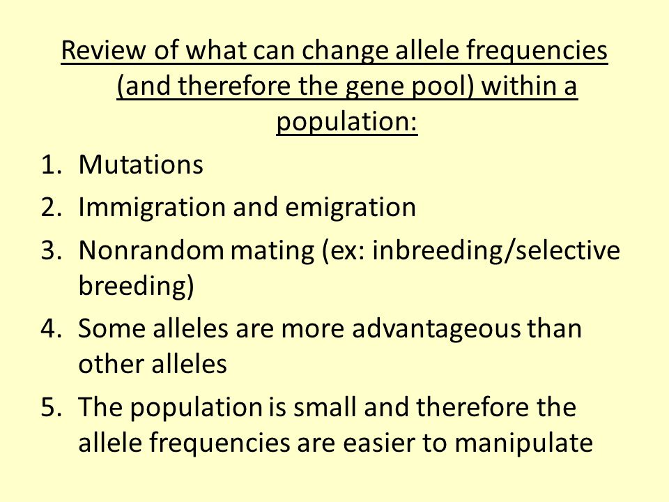 Review of what can change allele frequencies (and therefore the gene pool) within a population: 1.Mutations 2.Immigration and emigration 3.Nonrandom m