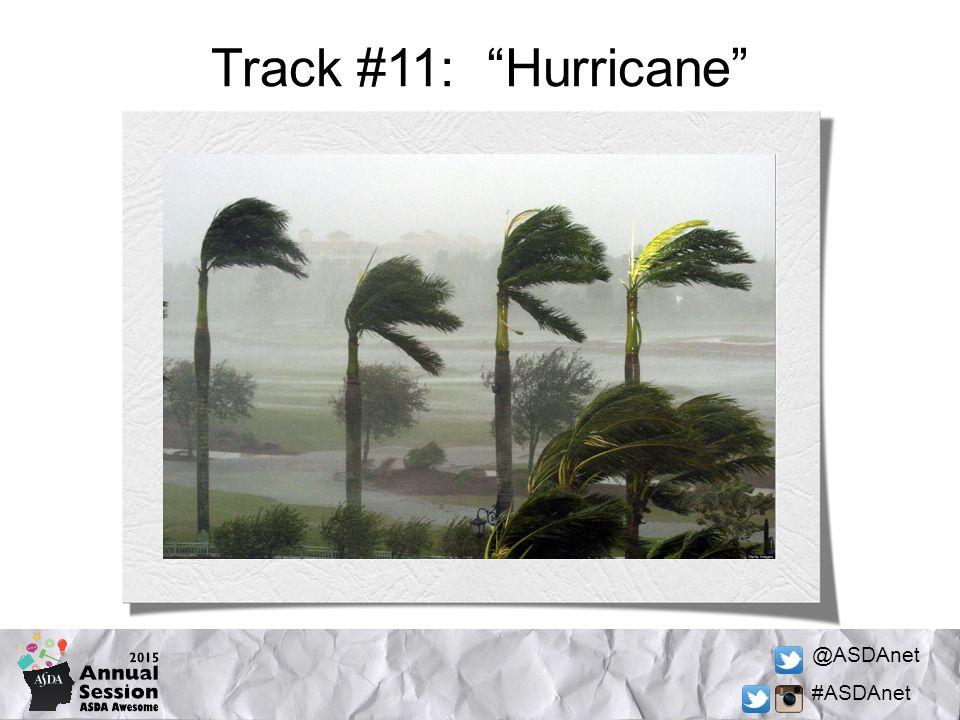 @ASDAnet #ASDAnet Track #11: Hurricane