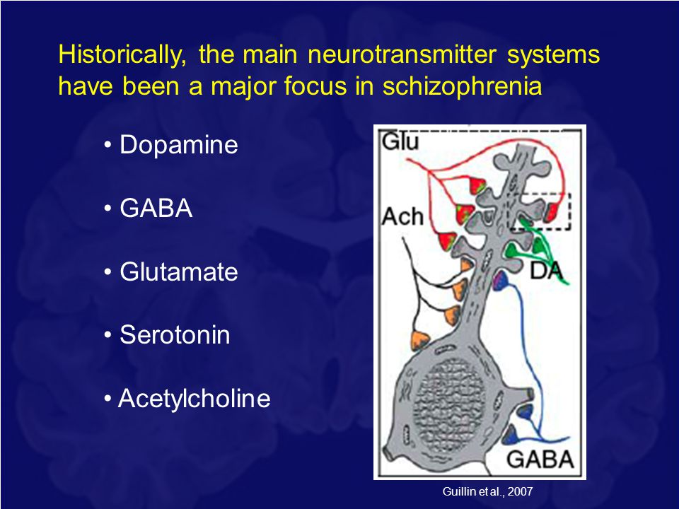 Historically, the main neurotransmitter systems have been a major focus in schizophrenia Dopamine GABA Glutamate Serotonin Acetylcholine Guillin et al