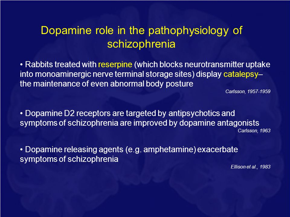 Dopamine role in the pathophysiology of schizophrenia Rabbits treated with reserpine (which blocks neurotransmitter uptake into monoaminergic nerve te