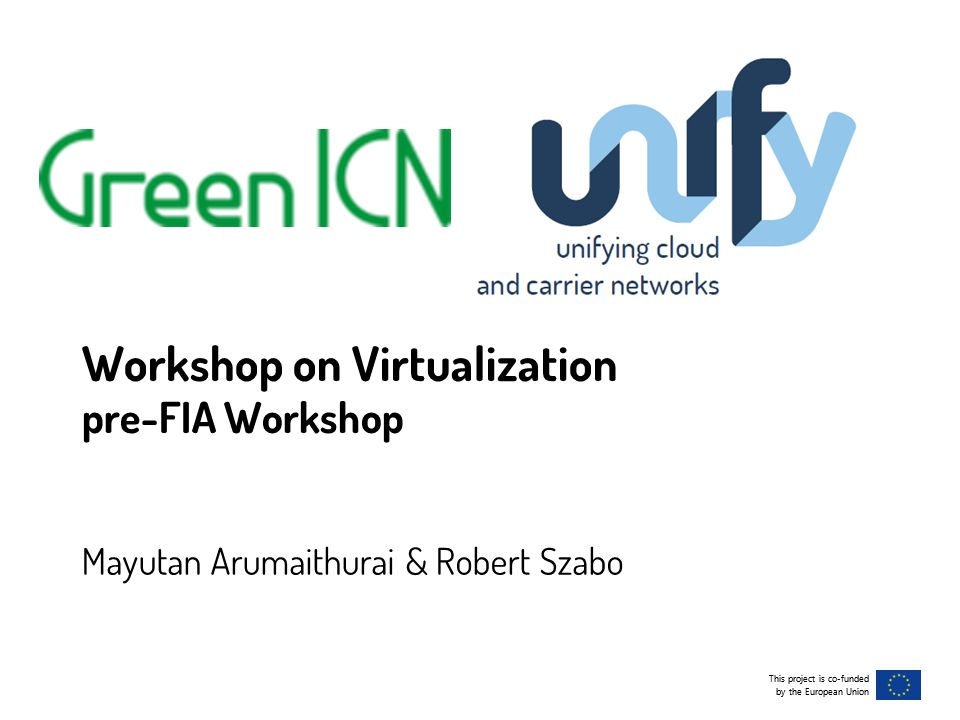 This project is co-funded by the European Union This project is co-funded by the European Union Workshop on Virtualization pre-FIA Workshop Mayutan Arumaithurai & Robert Szabo