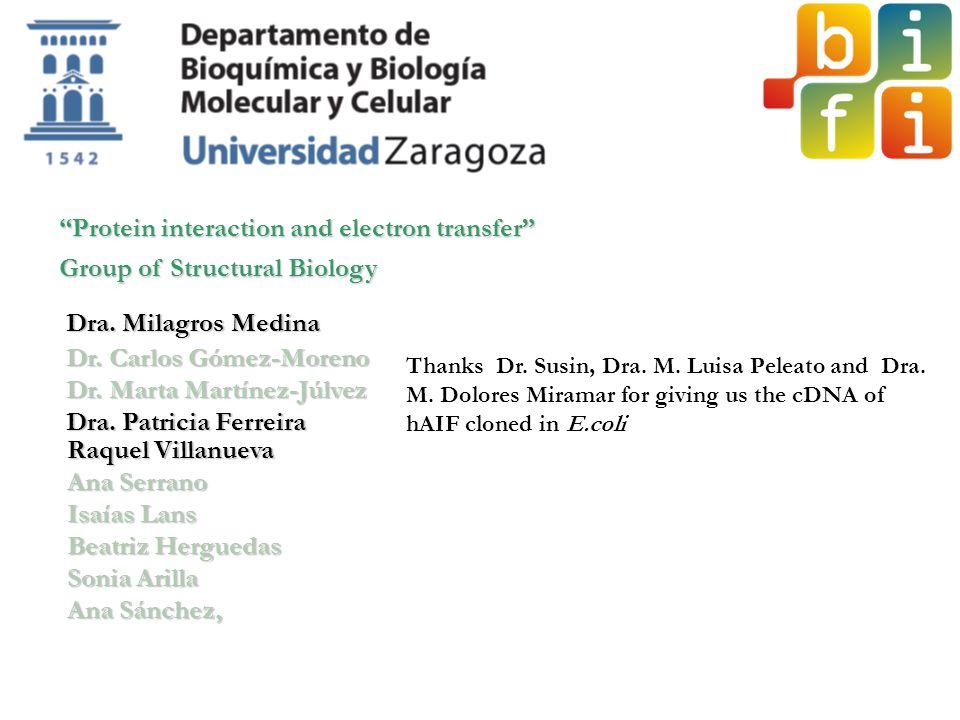 Dra. Milagros Medina Dr. Carlos Gómez-Moreno Dr. Marta Martínez-Júlvez Dra. Patricia Ferreira Raquel Villanueva Ana Serrano Isaías Lans Beatriz Hergue