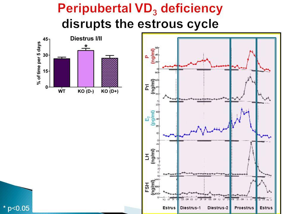 * p<0.05 P (ng/ml) Prl (ng/ml) E 2 (pg/ml) LH (ng/ml) FSH (ng/ml) Estrus Diestrus-1 Diestrus-2 Proestrus Estrus