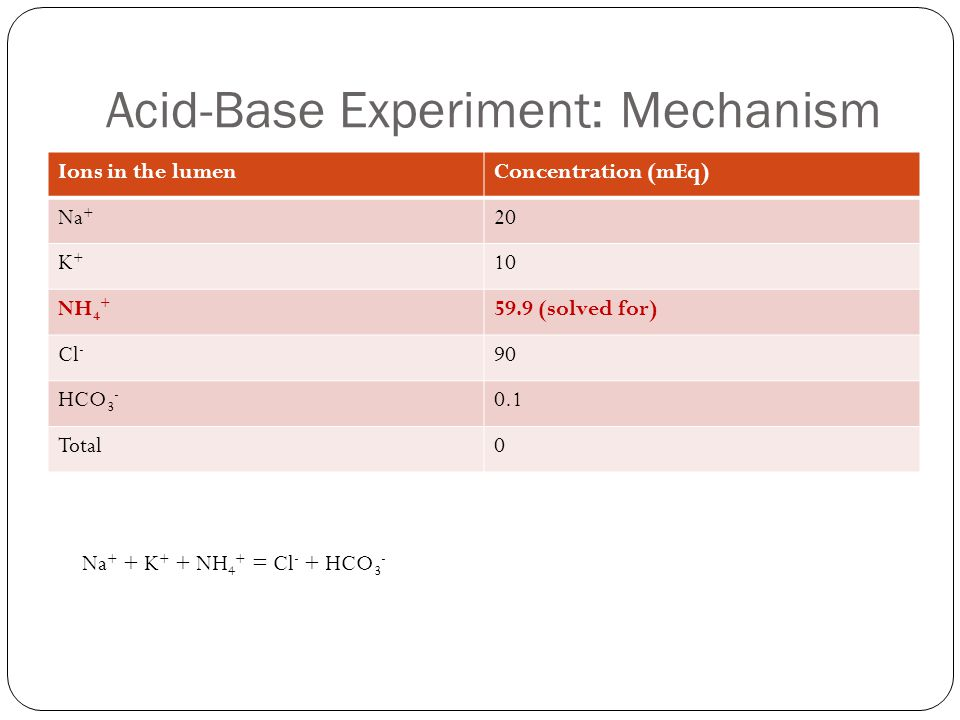 Acid-Base Experiment: Mechanism Ions in the lumenConcentration (mEq) Na + 20 K+K+ 10 NH 4 + 59.9 (solved for) Cl - 90 HCO 3 - 0.1 Total0 Na + + K + + NH 4 + = Cl - + HCO 3 -