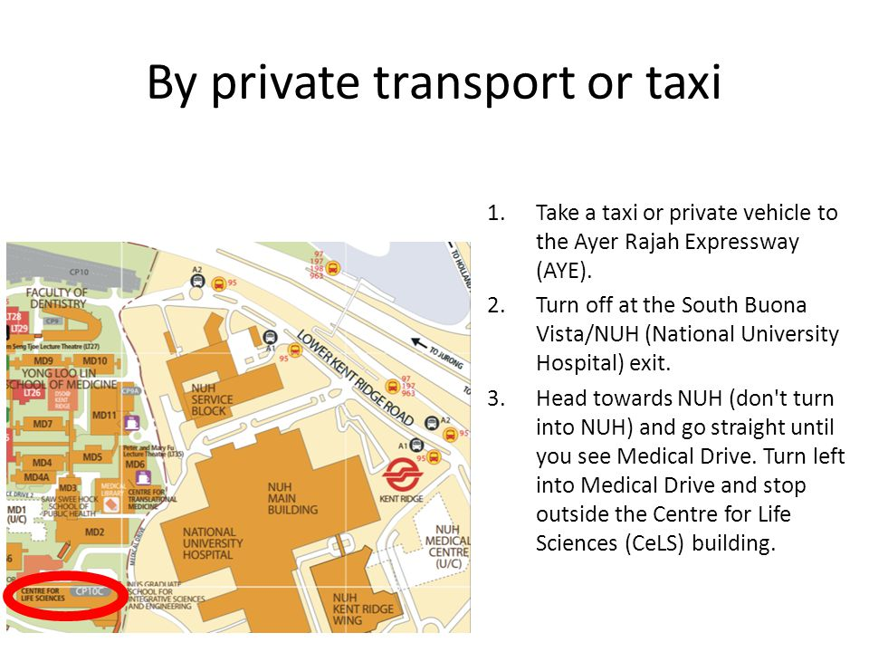 By private transport or taxi 1.Take a taxi or private vehicle to the Ayer Rajah Expressway (AYE). 2.Turn off at the South Buona Vista/NUH (National Un