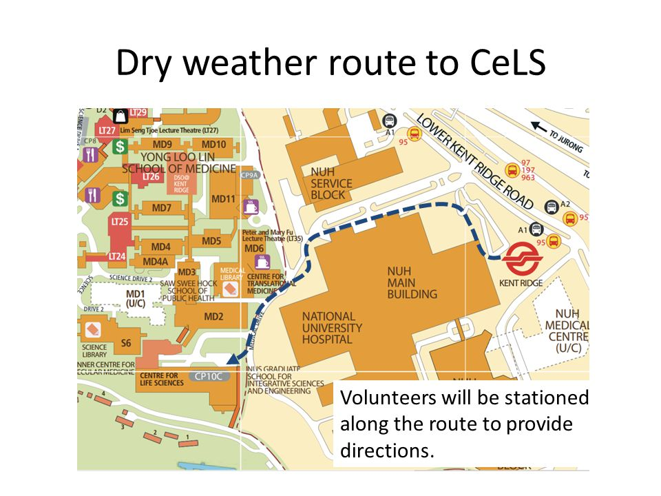 Dry weather route to CeLS Volunteers will be stationed along the route to provide directions.