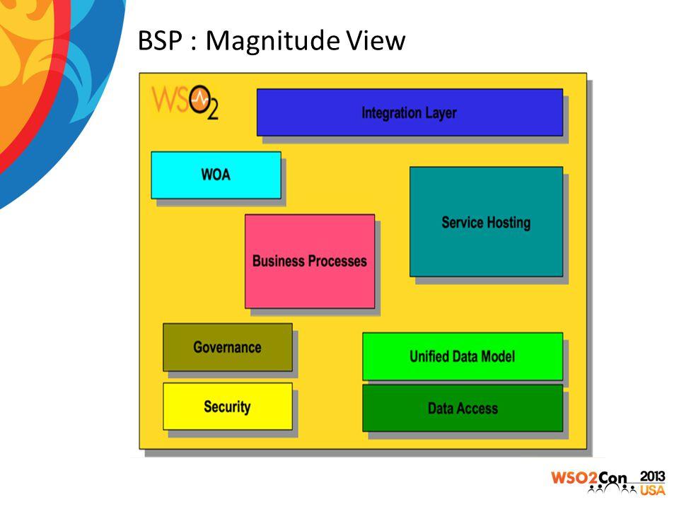 BSP : Magnitude View