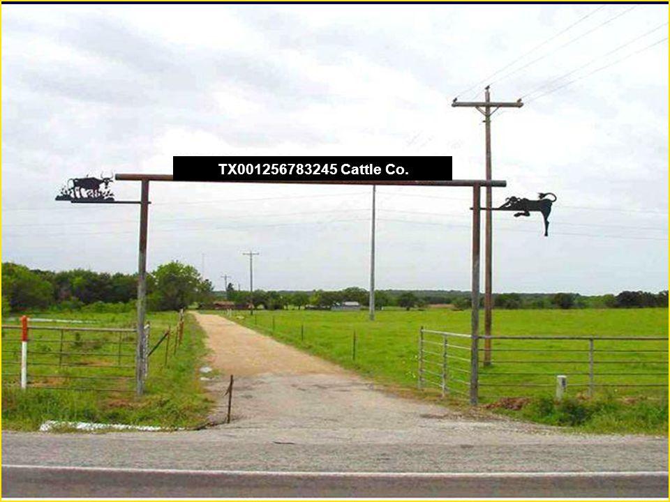 TX001256783245 Cattle Co.