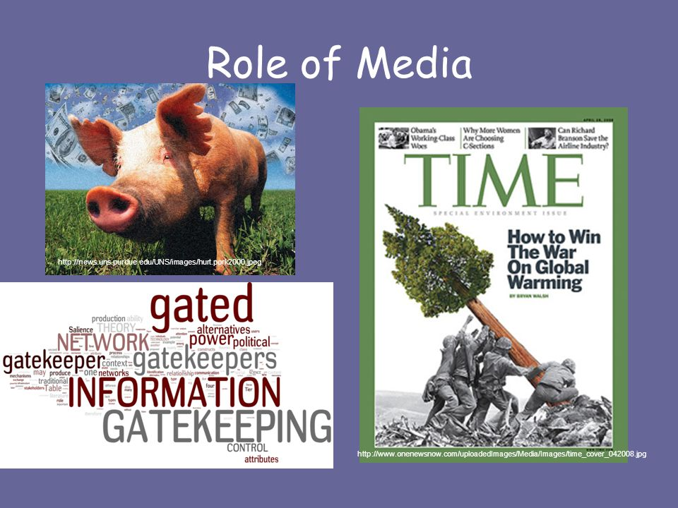 Role of Media http://www.onenewsnow.com/uploadedImages/Media/Images/time_cover_042008.jpg http://news.uns.purdue.edu/UNS/images/hurt.pork2000.jpeg http://ekarine.org/wp-content/uploads/2008/12/ngt.jpg