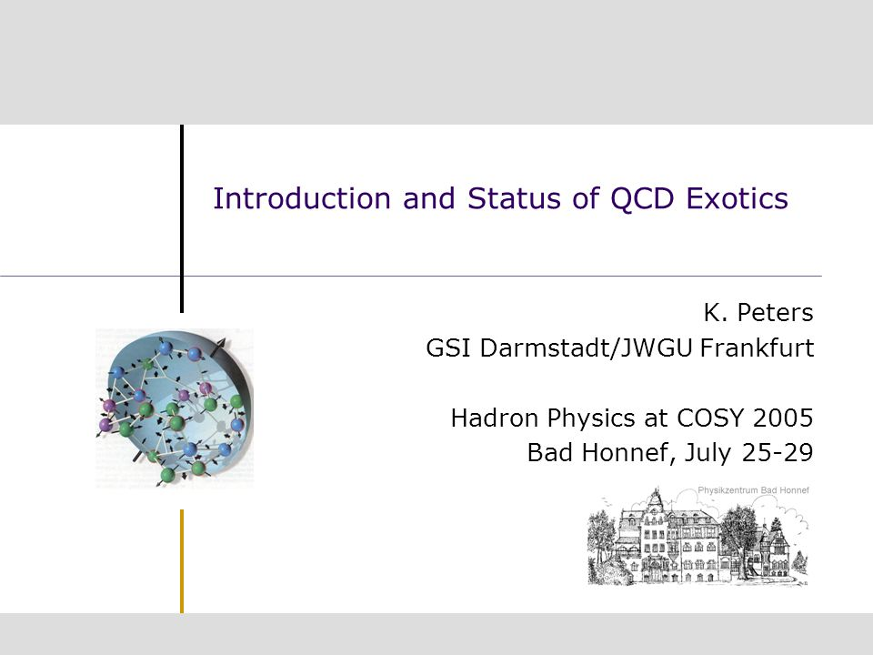 Introduction and Status of QCD Exotics K.