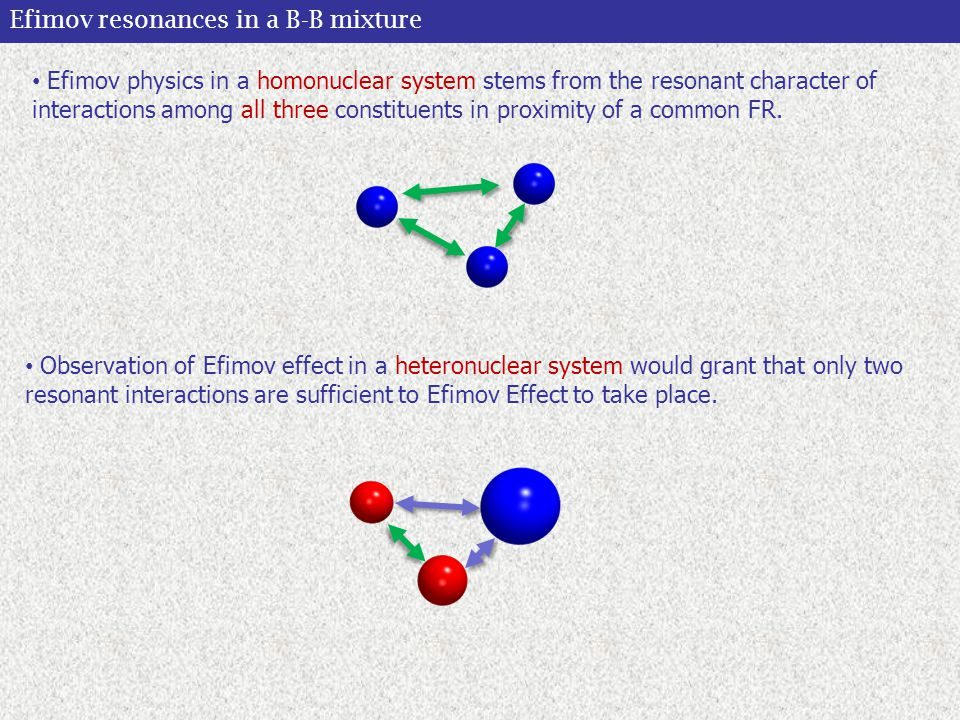 Efimov resonances in a B-B mixture Observation of Efimov effect in a heteronuclear system would grant that only two resonant interactions are sufficient to Efimov Effect to take place.