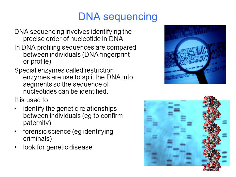 DNA sequencing DNA sequencing involves identifying the precise order of nucleotide in DNA. In DNA profiling sequences are compared between individuals