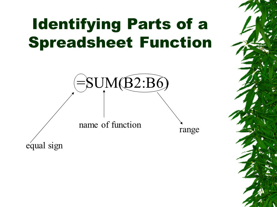 Identifying Parts of a Spreadsheet Function =SUM(B2:B6) equal sign name of function range