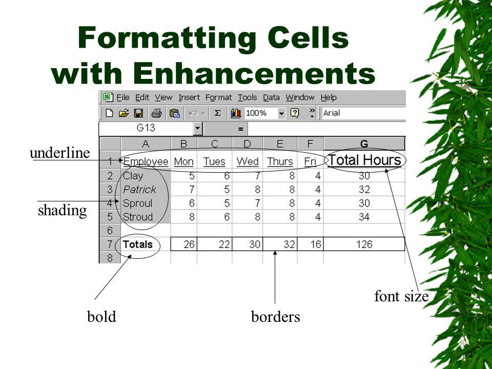 Formatting Cells with Enhancements boldborders font size shading underline