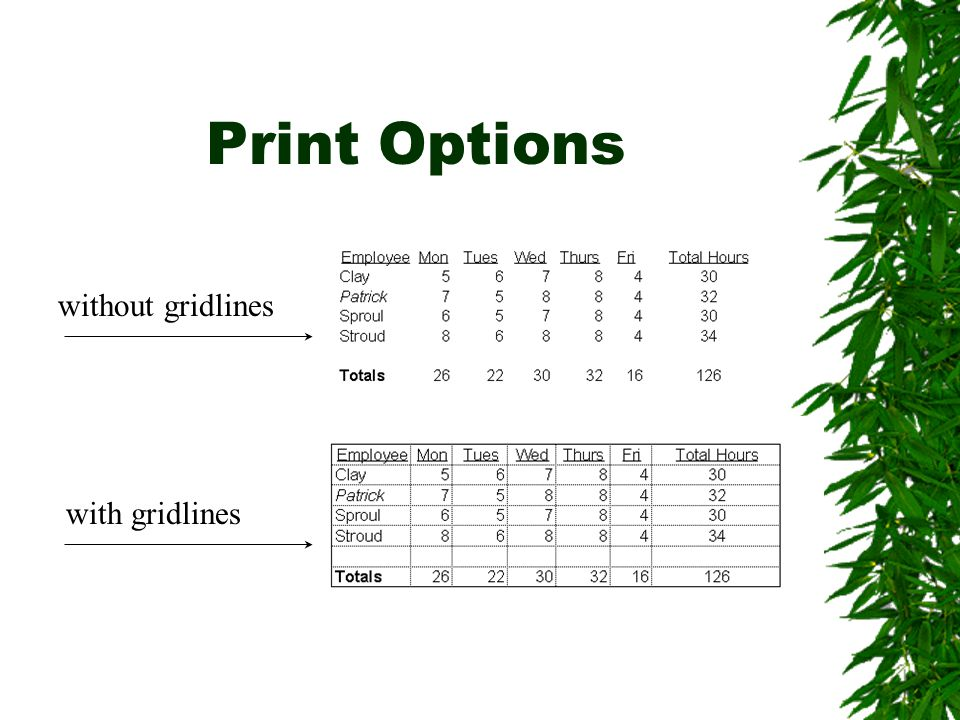 Print Options without gridlines with gridlines