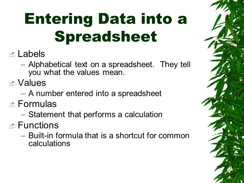 Entering Data into a Spreadsheet  Labels –Alphabetical text on a spreadsheet.