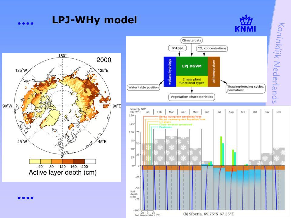 LPJ-WHy model