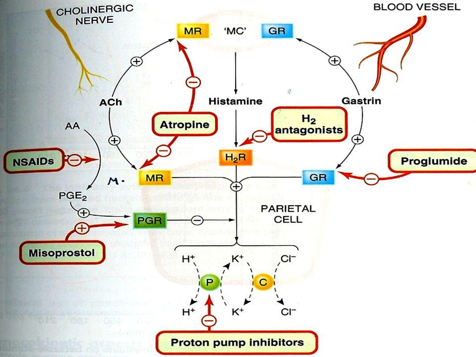 2.Misoprostol Prostaglandin Analogues (PGE1 ) Prostaglandin Analogues (PGE1 )  HCL secretion.