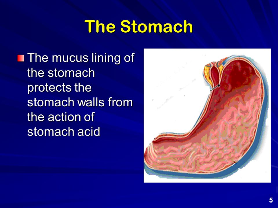 Acid Indigestion and Heartburn When excess acid is produced a condition known as acid indigestion results.