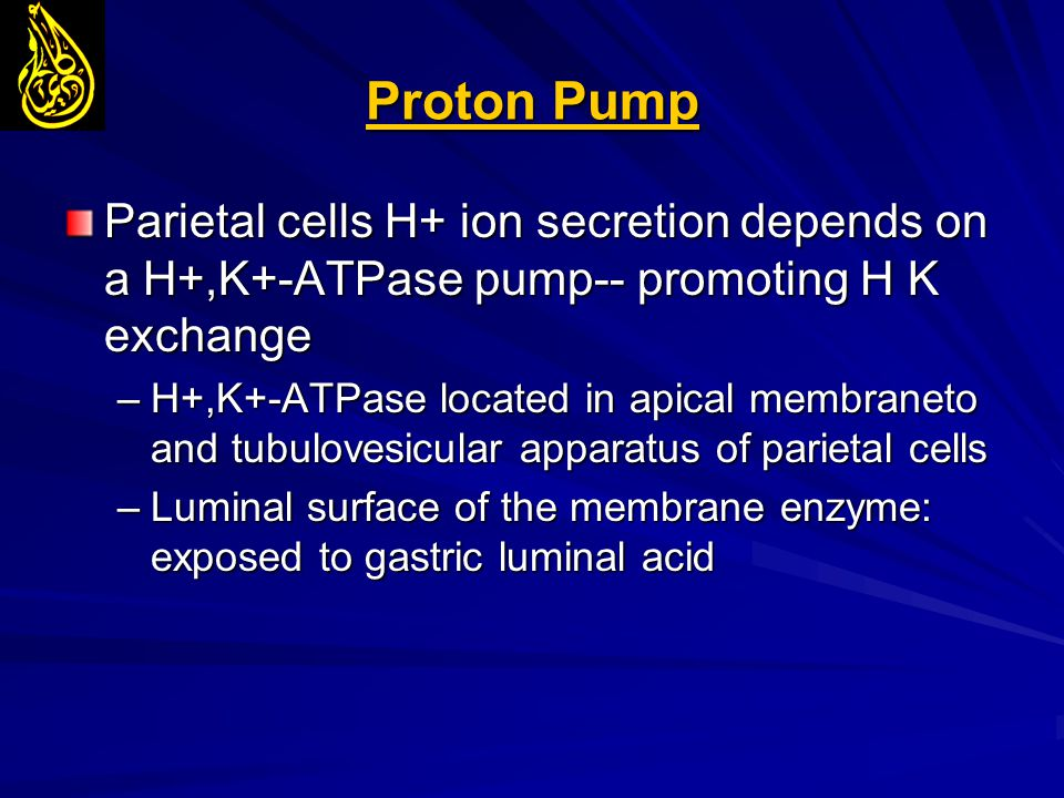 Proton Pump Parietal cells H+ ion secretion depends on a H+,K+-ATPase pump-- promoting H K exchange –H+,K+-ATPase located in apical membraneto and tub