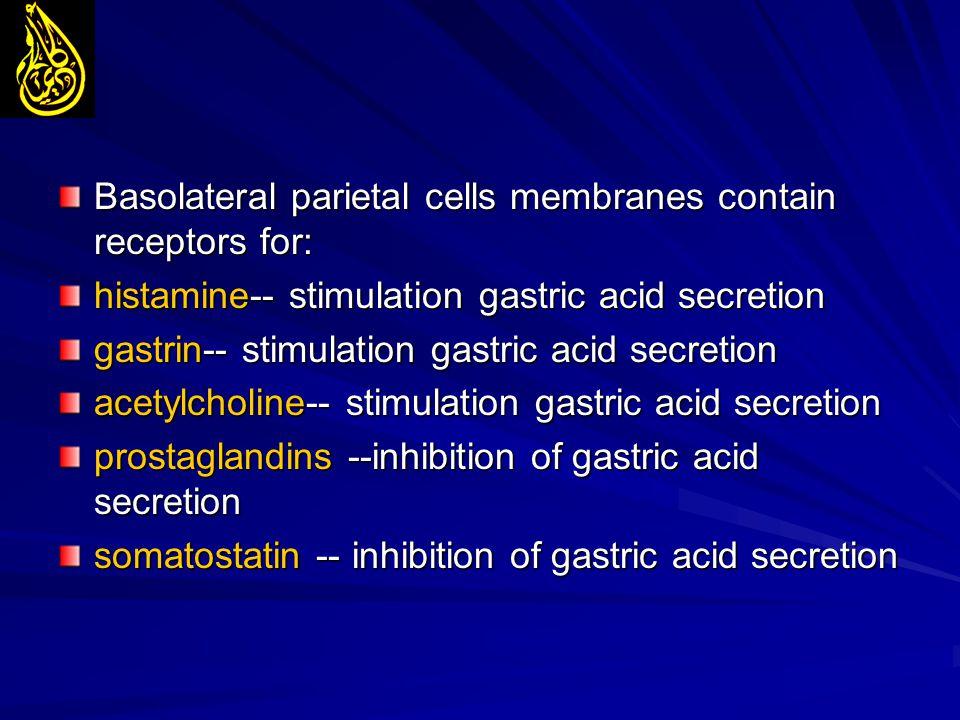 Basolateral parietal cells membranes contain receptors for: histamine-- stimulation gastric acid secretion gastrin-- stimulation gastric acid secretio