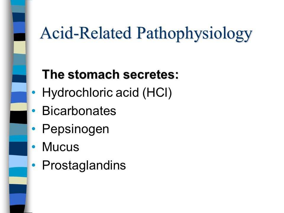 Glands of the stomach Cardiac Pyloric Gastric* * The gastric glands are the largest in number.