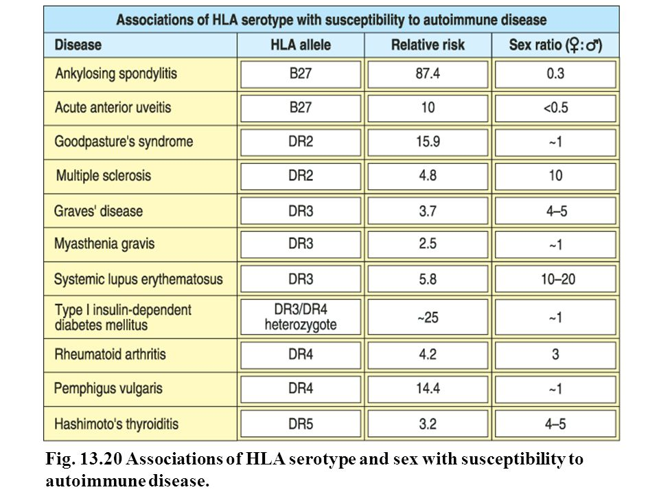 Fig. 13.20 Associations of HLA serotype and sex with susceptibility to autoimmune disease.