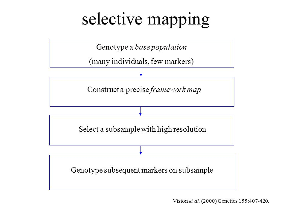 selective mapping Genotype a base population (many individuals, few markers) Construct a precise framework map Select a subsample with high resolution Genotype subsequent markers on subsample Vision et al.