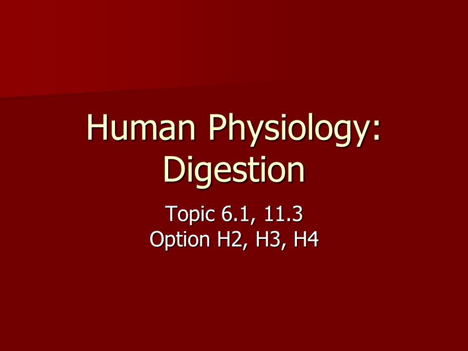 Human Physiology: Digestion Topic 6.1, 11.3 Option H2, H3, H4