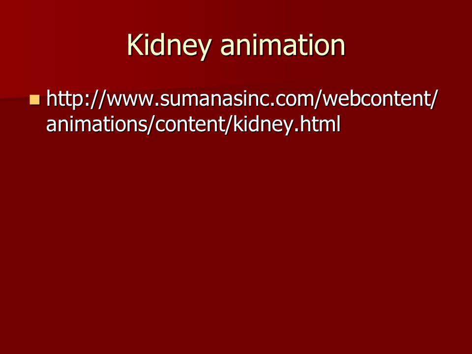 Kidney animation http://www.sumanasinc.com/webcontent/ animations/content/kidney.html http://www.sumanasinc.com/webcontent/ animations/content/kidney.
