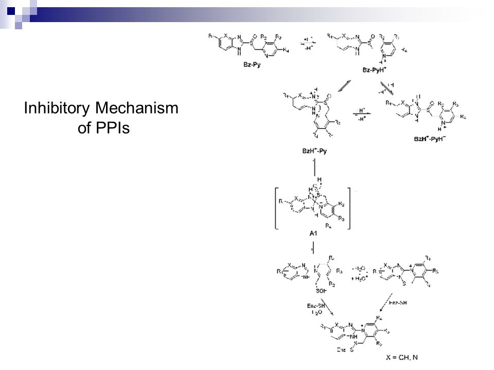 Inhibitory Mechanism of PPIs