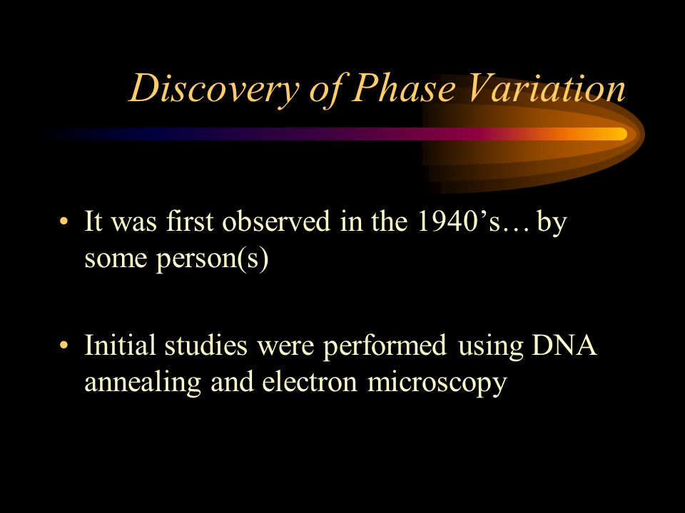 Discovery of Phase Variation It was first observed in the 1940's… by some person(s) Initial studies were performed using DNA annealing and electron mi